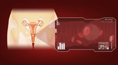 Vagina - Blood Stream - Vector Animation - Blood Circulation - Zoom Analysis  - stock footage