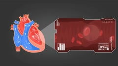 Heart - Blood Stream - Vector Animation - Blood Circulation - Zoom Analysis - Stock Footage