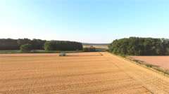 Flying over wheat field with harvester 4K Stock Footage