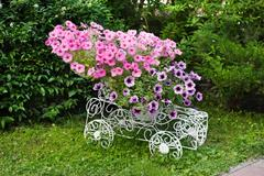 Flowerbed cart with bright pink flowers Stock Photos