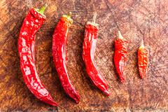 Ordered red chili peppers Stock Photos