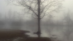 AERIAL: Scary scene of flooded meadow fields in foggy winter Stock Footage