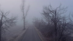 AERIAL: Country road leading through dark creepy fields in foggy winter Stock Footage