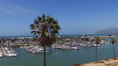 Aerial Drone clip of tall palm over Ventura harbor Stock Footage