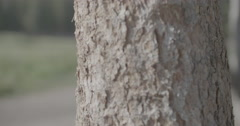 Hiker out of focus Stock Footage