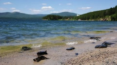 Coastal waves on Lake Turgoyak, Ural, Russia Stock Footage