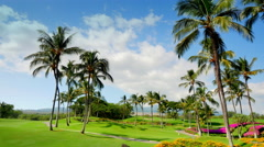 4K Tropical Vacation Golf Course, Palm Trees Green Lawns and Blue Skies Stock Footage