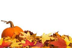 Autumn leaves with pumpkin Stock Photos