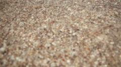 Little sea shells on sand, Sea waves on beach Stock Footage