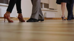 Lags Moving On The Floor During The Dancing Lesson Stock Footage