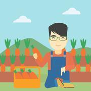 Farmer collecting carrots vector illustration Stock Illustration
