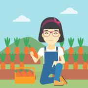 Farmer collecting carrots vector illustration - stock illustration