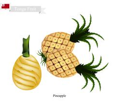 Fresh Pineapple, A Famous Fruit in Tonga - stock illustration