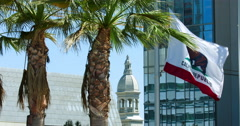 Flag of California near the palm tree in Los Angeles 4K RAW Stock Footage