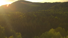 AERIAL: Setting sun shining on lush green forest treetops at amazing sunset Stock Footage
