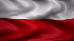 Flag of Poland Stock Footage