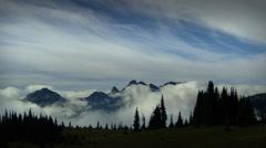 Morning mist in forest, Mount Rainier National Park, Washington Stock Footage