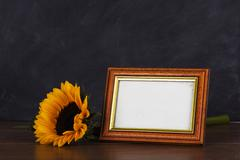 Picture frame and sunflower against a dirty blackboard background - stock photo
