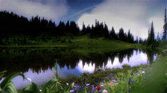 Wildflowers on the shore of lake at dawn, Mount Rainier, Washington Stock Footage