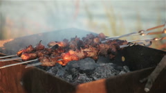 Fry the meat on the skewers. Picnic. Stock Footage