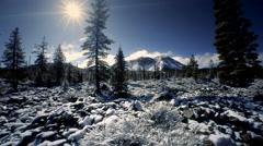 Mount Lassen National Park in winter Stock Footage