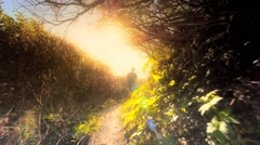 Teen boy jogging down forest trail Stock Footage
