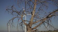 Wind Energy Tribune Stock Footage