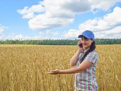 Young pretty farmer girl standing in yellow wheat field and talking on the ph - stock photo