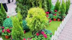 People walk by paved street near flowerbed with plants at spring day Stock Footage