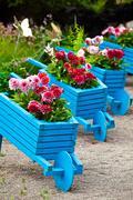 Garden design elements landscaping Stock Photos