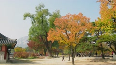 Lot of tourists walk by park near building of Geyongbokgun Palace Stock Footage