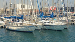 Harbor With Many White Sailing Boats Stock Footage