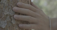 Hand sliding off tree bark Stock Footage