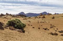 Arid igneous landscape with sparse greenery Stock Photos