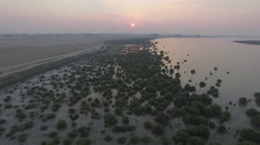 Aerial shot of mangroves during evening Stock Footage