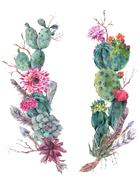 Wreath of flowers bouquet with cactus, succulent Stock Illustration