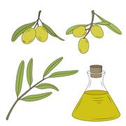 Bottle of oil and the branch of the olive tree. Stock Illustration