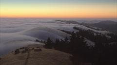 Fog drifting over a hill on Mt Tamalpais, San Francisco Stock Footage
