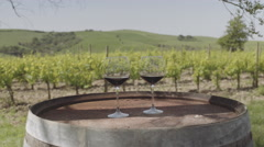 Two Red wine glasses at vineyard in Italy - stock footage