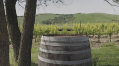 Two Red wine glasses at vineyard in Italy Stock Footage