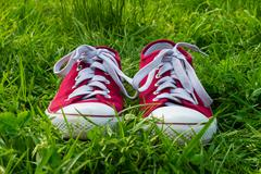 Sneakers on green grass, spring walk Stock Photos