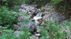 4K. Wild river flows in Alps Mountains, clean blue water and green forest. Stock Footage