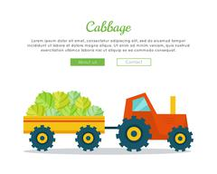 Cabbage Farm Web Vector Banner in Flat Design Stock Illustration