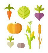 Set of Vegetables Vector Illustration Stock Illustration