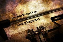 Monthly budget plan Living expenses Stock Illustration