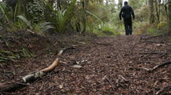 Man hiker hiking in rain forest Stock Footage