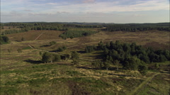 Cannock Chase Stock Footage