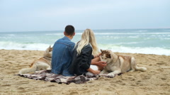 Back view of a couple sitting on the beach with husky dogs slow motion Stock Footage