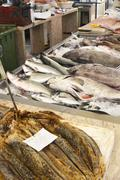 Fish Market in Funchal, Madeira, Portugal - stock photo