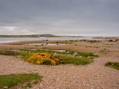 Beautiful sands of Spey Bay, Moray, Grampian, Scotland Stock Photos